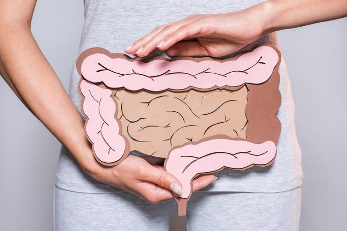 Топ-10 продуктів-пребіотиків для здорового кишечника