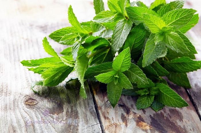8 корисних властивостей м'ятного масла, про які ви не знали